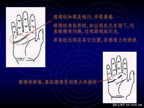 有钱人的手相_井字纹手相图解_怎么看手相算命_手相 ...